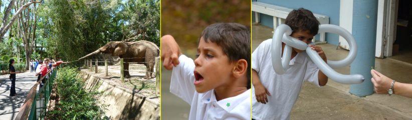 saul 2010 03 zoo